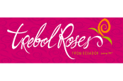 Logo-Trebol-371x246-174x115