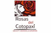 logo_rosas_del_cotopaxi-174x115