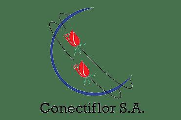 Conectiflor 371x246